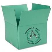 Коробка шаров AIM 0,23 (4300 шт) 12 пачек