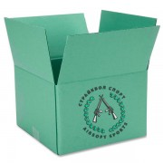 Коробка шаров AIM 0,23 (4300 шт) 24 пачеки